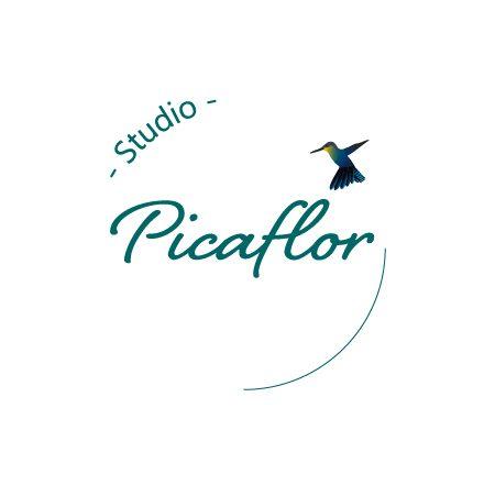 Logo Studio Picaflor