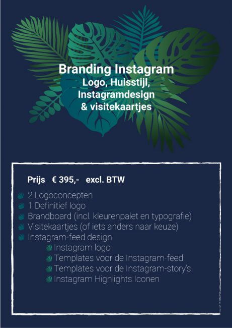 Branding Instagram Studio Picaflor