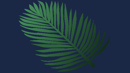 Logo & Huisstijl