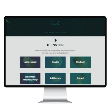 Webdesign Studio Picaflor